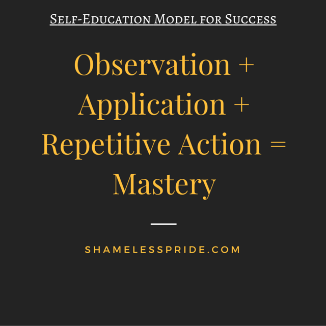 Self-Education Model for Success