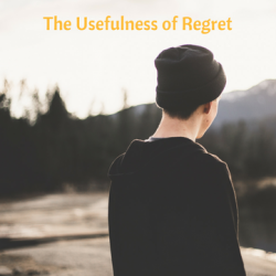 The Usefulness of Regret