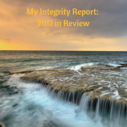 My Integrity Report_ 2017 in Review
